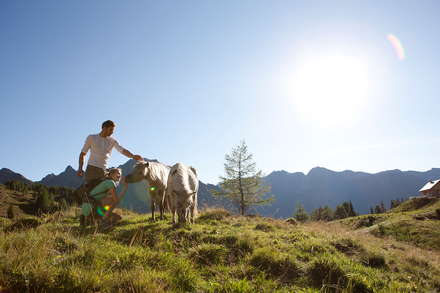 Hiking holidays in Salzburger Lungau - nature experiences for all the senses