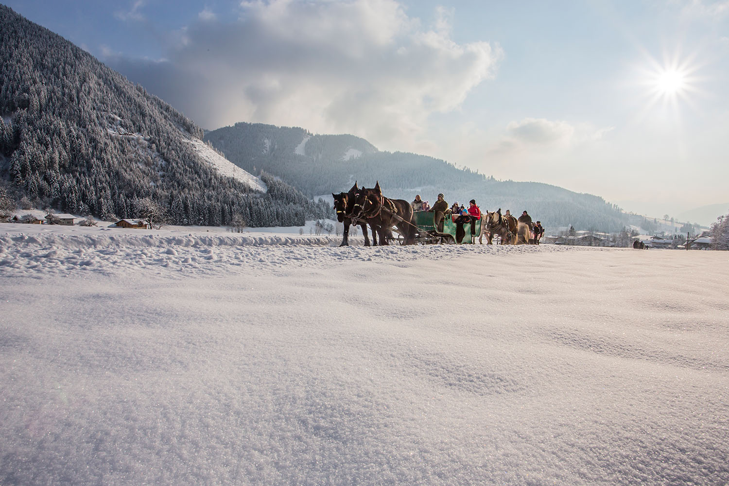 Horse-drawn sleigh ride in Lungau - Salzburg